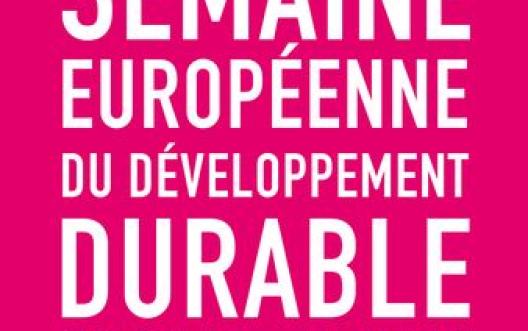 14162 logo semaine europeenne DD FR rose 1 t