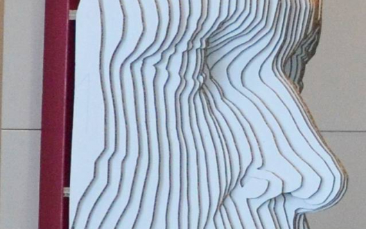 Visage 3D en carton